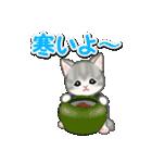 はんてん猫ちゃんズ(個別スタンプ:3)