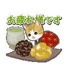 はんてん猫ちゃんズ(個別スタンプ:13)