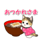 はんてん猫ちゃんズ(個別スタンプ:14)