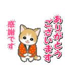 はんてん猫ちゃんズ(個別スタンプ:15)