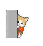 はんてん猫ちゃんズ(個別スタンプ:21)