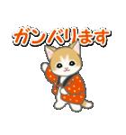 はんてん猫ちゃんズ(個別スタンプ:26)