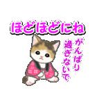 はんてん猫ちゃんズ(個別スタンプ:27)