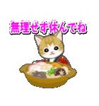 はんてん猫ちゃんズ(個別スタンプ:28)
