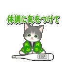 はんてん猫ちゃんズ(個別スタンプ:31)