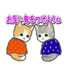 はんてん猫ちゃんズ(個別スタンプ:33)