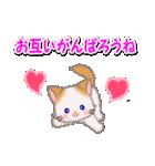 ハート伝える もふもふしっぽの子猫ちゃん(個別スタンプ:19)