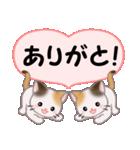 ハート伝える 三毛猫ツインズ(個別スタンプ:6)