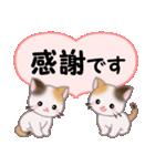 ハート伝える 三毛猫ツインズ(個別スタンプ:9)