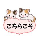ハート伝える 三毛猫ツインズ(個別スタンプ:11)
