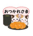 ハート伝える 三毛猫ツインズ(個別スタンプ:13)