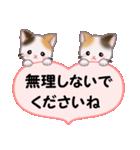 ハート伝える 三毛猫ツインズ(個別スタンプ:16)