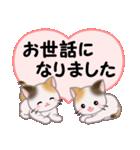 ハート伝える 三毛猫ツインズ(個別スタンプ:20)