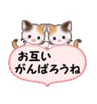 ハート伝える 三毛猫ツインズ(個別スタンプ:23)