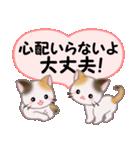 ハート伝える 三毛猫ツインズ(個別スタンプ:31)