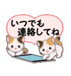 ハート伝える 三毛猫ツインズ(個別スタンプ:34)