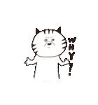 猫と亀の友情のスタンプ(個別スタンプ:13)