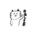 猫と亀の友情のスタンプ(個別スタンプ:16)