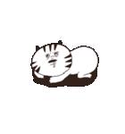 猫と亀の友情のスタンプ(個別スタンプ:21)
