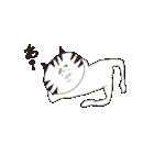 猫と亀の友情のスタンプ(個別スタンプ:27)