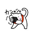 カメラをもったネコ。(個別スタンプ:10)
