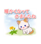 優しい春 もふもふしっぽの子猫ちゃん(個別スタンプ:1)