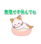 優しい春 もふもふしっぽの子猫ちゃん(個別スタンプ:16)