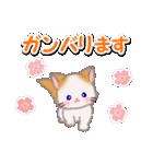 優しい春 もふもふしっぽの子猫ちゃん(個別スタンプ:30)