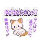 優しい春 もふもふしっぽの子猫ちゃん(個別スタンプ:31)