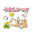 優しい春 よちよち豆柴(個別スタンプ:28)