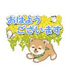 優しい春 よちよち豆柴(個別スタンプ:37)