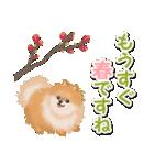 優しい春 ふわふわポメちゃん(個別スタンプ:2)