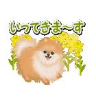 優しい春 ふわふわポメちゃん(個別スタンプ:33)