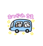 むぎ(special)/わんこと車中泊公式スタンプ(個別スタンプ:5)