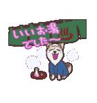 むぎ(special)/わんこと車中泊公式スタンプ(個別スタンプ:16)