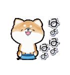 陽気で元気な柴犬(個別スタンプ:24)