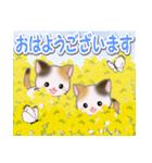 春の三毛猫ツインズ(個別スタンプ:1)