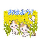春の三毛猫ツインズ(個別スタンプ:2)