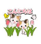 春の三毛猫ツインズ(個別スタンプ:3)