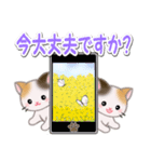 春の三毛猫ツインズ(個別スタンプ:6)