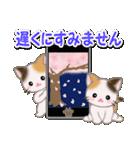 春の三毛猫ツインズ(個別スタンプ:7)