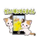 春の三毛猫ツインズ(個別スタンプ:8)