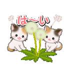 春の三毛猫ツインズ(個別スタンプ:9)