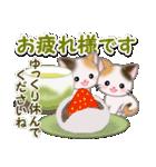 春の三毛猫ツインズ(個別スタンプ:13)