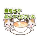 春の三毛猫ツインズ(個別スタンプ:16)
