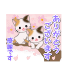 春の三毛猫ツインズ(個別スタンプ:17)