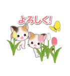 春の三毛猫ツインズ(個別スタンプ:19)