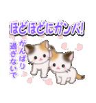 春の三毛猫ツインズ(個別スタンプ:26)