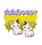 春の三毛猫ツインズ(個別スタンプ:27)