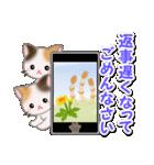 春の三毛猫ツインズ(個別スタンプ:29)